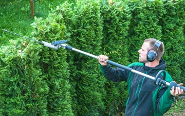 Brecon hedge trimming costs