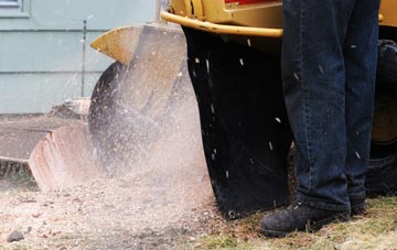 the stump grinding process explained