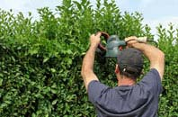 free Brecon hedge trimming quotes