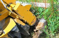 Brecon tree stump grinding services